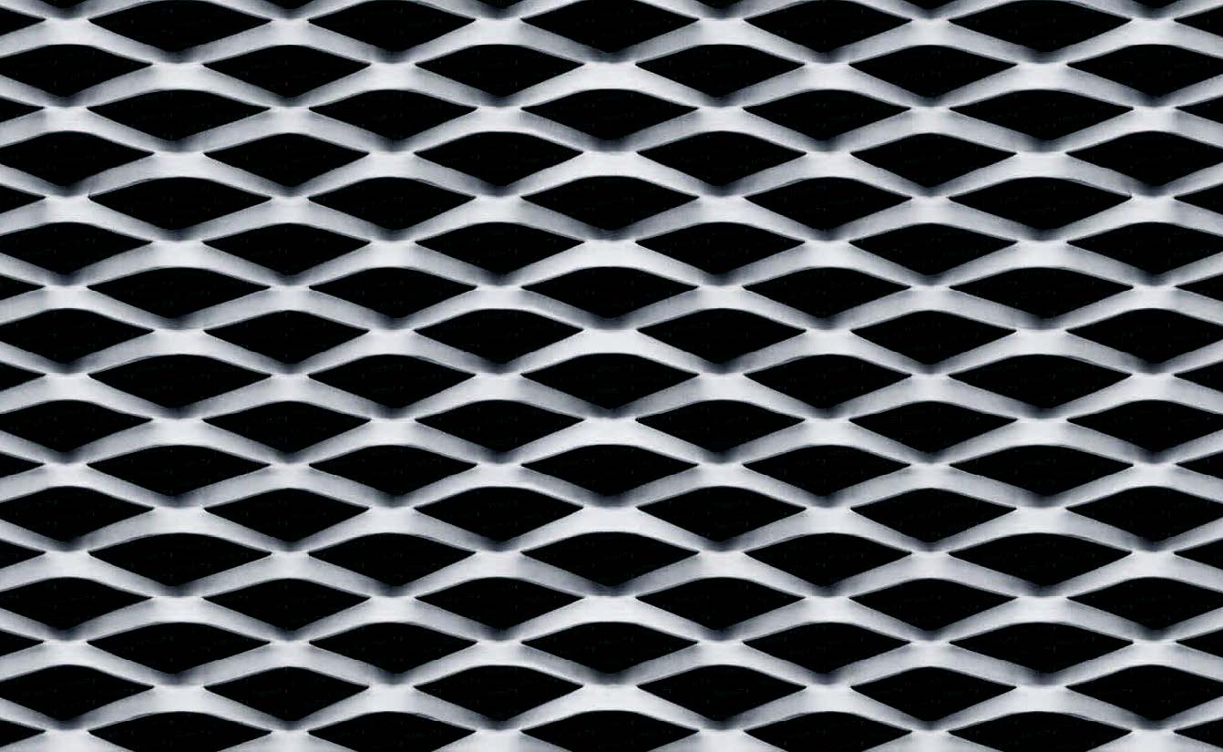 Ismar RB 75   Expanded Mesh